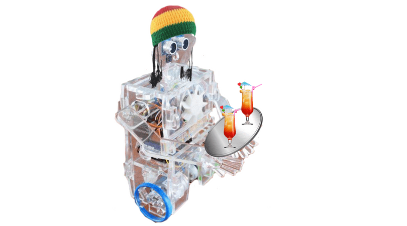 The Flagship product for Kimroy Bailey Robotics the Rasta Robot which teaches the fundamentals of robotics